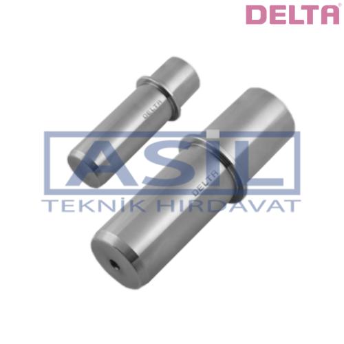D13.01 KOLON - DELTA